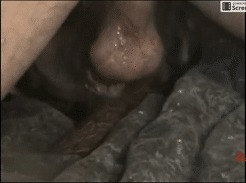 Chico follando a su perra color chocolate hasta el (中出)creampie